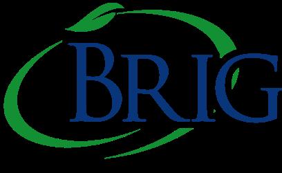 Brigg-250